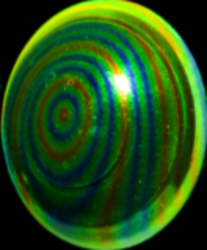 Das Bild zeigt die zu untersuchende Probe mit dem aufgeprägten Muster zur Detektion der Oberfläche während des Versuchs.