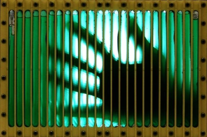 Der Photobioreaktor (c)