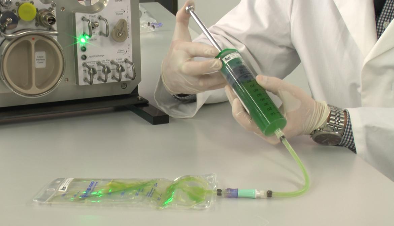 Die Algen des Photobioreaktors (c)
