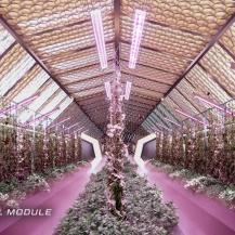 Die landwirtschaftlichen Module in Nüwa sind die Hauptnahrungsquelle, sorgen aber auch für die Regeneration der Atmosphäre ABIBOO Studio / SONet